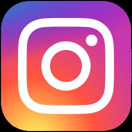 264px-Instagram_logo_2016